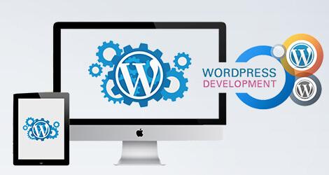 Mã nguồn WordPress được nhiều người sử dụng